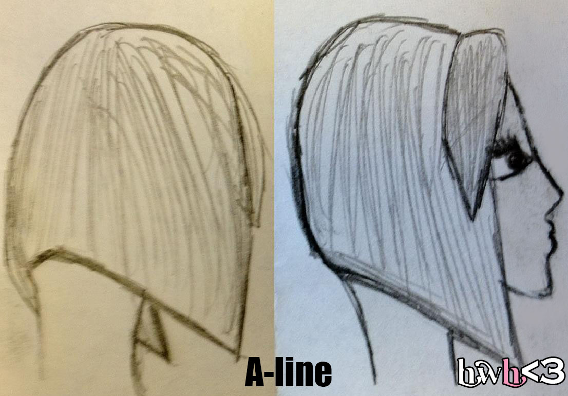 Difference Between Inverted and Graduated a Line Bob